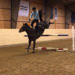 Blir din häst annorlunda på tävling?